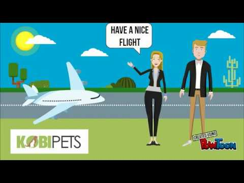 Tips on Air Travel With Your Pet