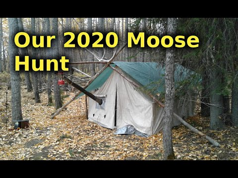 Alaska Moose Hunt For Our Yearly Meat Supply