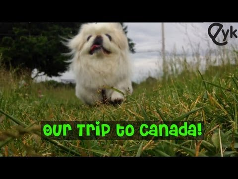 Wonderful Adventure Now Canada!