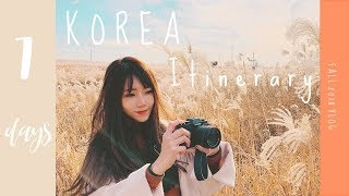 7 DAYS in SEOUL, KOREA - TRAVEL GUIDE ( FALL ITINERARY ) + first snow fall blog