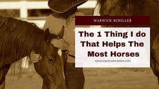 The one thing I do that helps the most horses