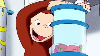 Curious George | Juicy George / The Big Picture | Full Episode | Cartoons for Children