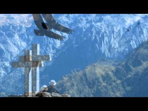 Despertar Andino - La paloma
