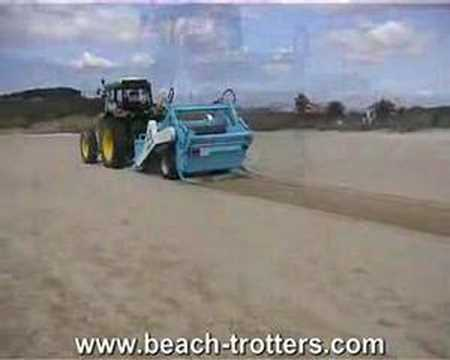Beach Trotters Runner