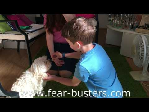 Ethan fear busters video