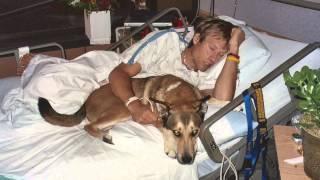 Denali - a tribute to man's best friend [OFFICIAL VIDEO]