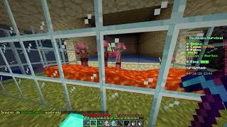 Construindo uma Farm de Zombie Pigman