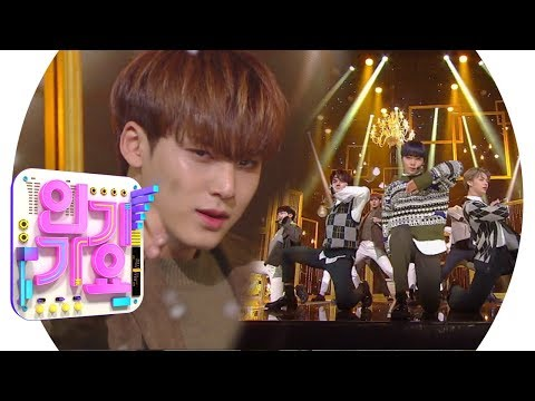SEVENTEEN(세븐틴) - Home @인기가요 Inkigayo 20190203