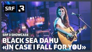 Black Sea Dahu - In Case I Fall For You (Live) | SRF 3 Showcase
