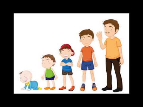 Child Development Stages - YouTube