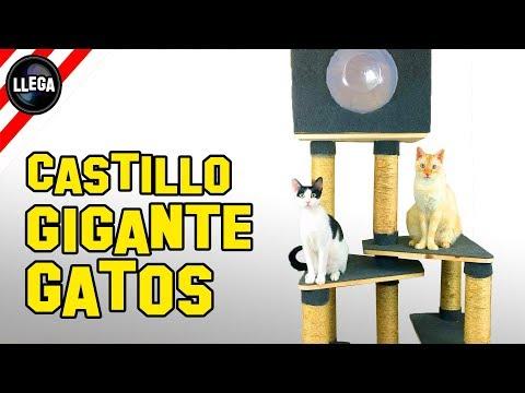 CASTILLO PARA GATOS GIGANTE – COMO HACER ESTE JUGUETE PARA MASCOTAS