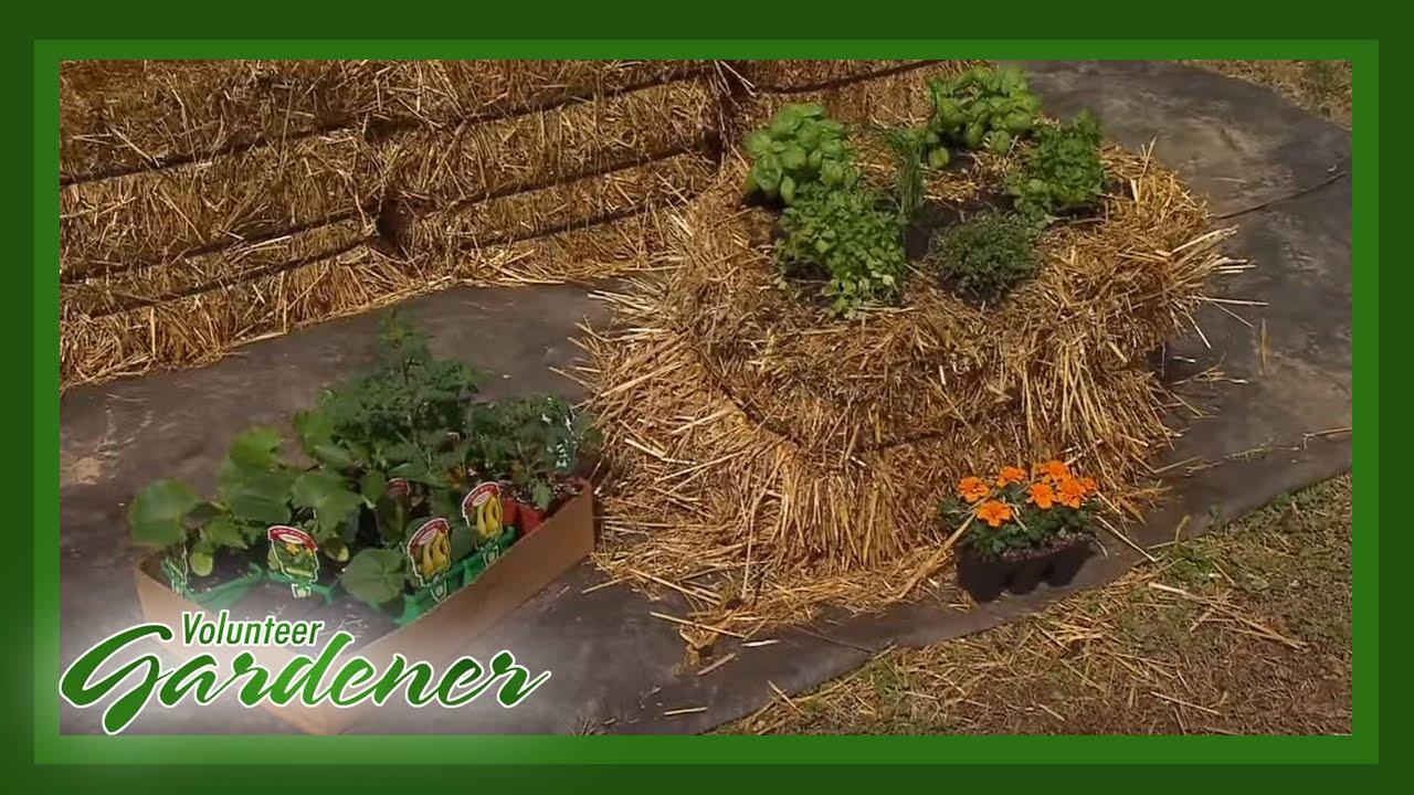 V Is For Vegetables Straw Bale Gardening  ...