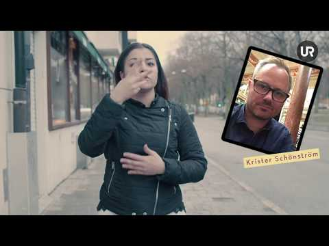 Teckenspråk - Hur? - Hawra möter Krister Schönström