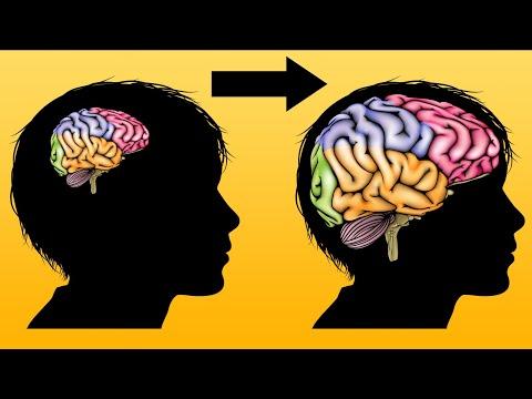 Как быстро Улучшить Память? 7 лайфхаков для запоминания