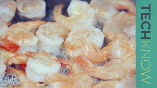 Unsafe shrimp and the question of seafood farming   TechKnow