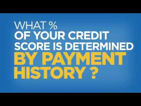 What Percentage of Your Credit Score is Determined by Payment History? – Credit in 60 Seconds