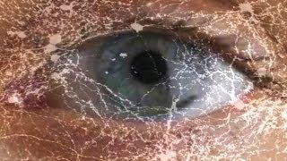 Your Motion-Sensing Eye Cells -- Mind Blow #79