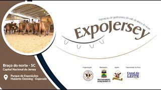 1º dia do Julgamento de Bezerras e Novilhas  - Expojersey 2021 Braço do Norte/SC