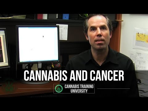 MARIJUANA AND CANCER-LATEST FINDINGS! EXCLUSIVE LOOK!