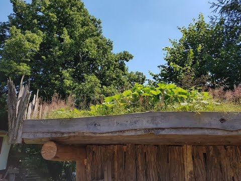 Vícefunkční dřevník se zelenou střechou