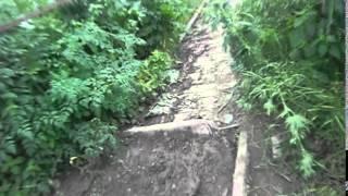 Canalizarea de la blocuri se scurge direct în râu #Căinari