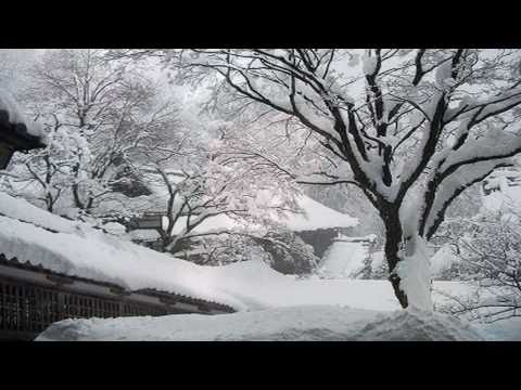 Love In The Snow 。雪 中 情 。鄧麗君 。Teresa Teng 。Cover