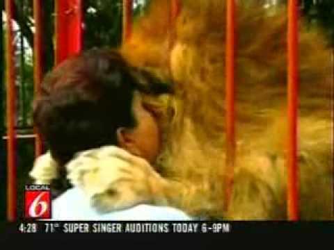 Ljubav izmedju lava i čoveka