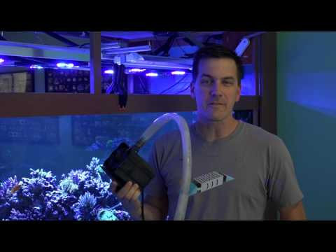 Mr. Saltwater Tank Friday AM Quick Tip: How to Save Your Tank In Case Your Return Pump Fails