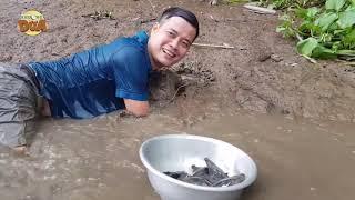 Khương Dừa về quê lặn sông bắt chang chang cờ, lặn hụt hơi mới bắt được đầy thau????