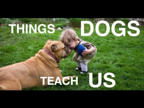 Things Dogs Teach Us