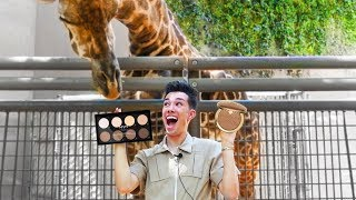 ZOO ANIMALS PICK MY MAKEUP