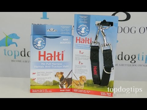 Halti No Pull Harness and Lead Giveaway