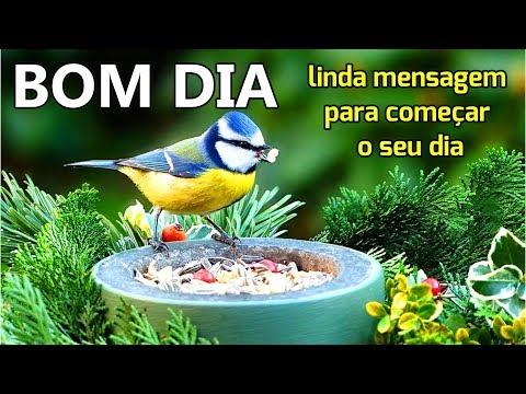 Mensagem de Bom Dia / O Sol Sempre Volta No Outro Dia !