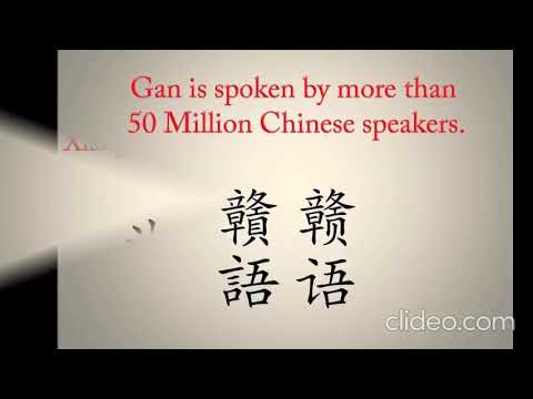 Diffrent Versions of Chinese Language