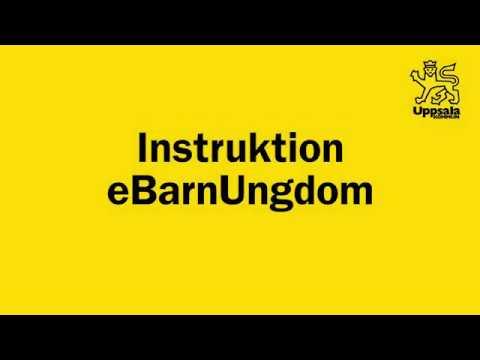 Instruktion eBarnUngdom