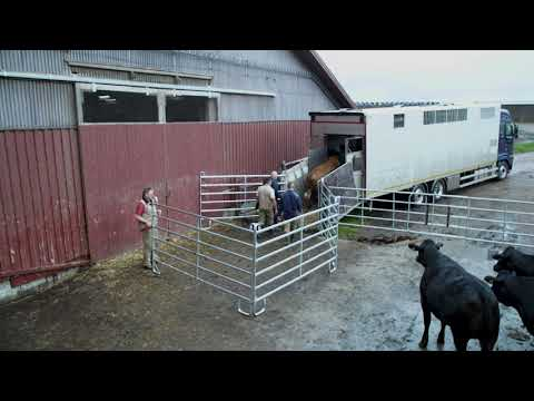 Smart lastning av djur 28