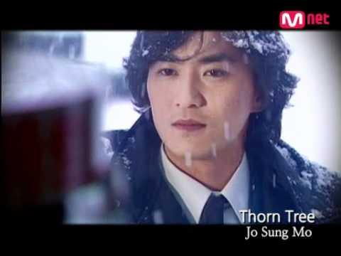 Jo Sung Mo (조성모) - Thorn Tree (가시나무)