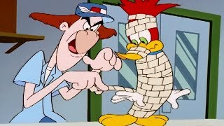 Woody Woodpecker Show | Signed, Sealed, Delivered | 1 Hour Compilation | Cartoons For Children
