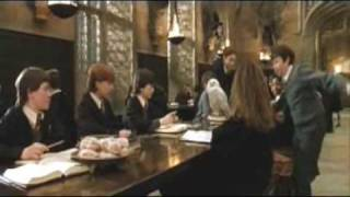 Deleted Scene from Harry Potter and the Philospher's Stone