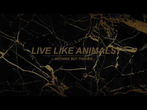Live Like Animals :: Nothing But Thieves (Lyrics)