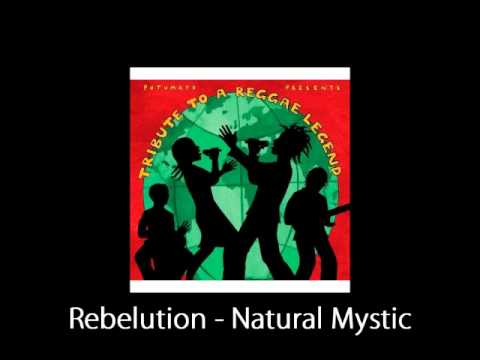 Rebelution - Natural Mystic Cover (Demo).wmv