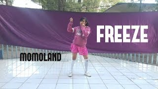 Momoland - Freeze Dance cover (Noon Light)