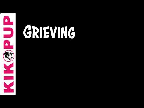 Grieving for Dream