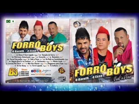 Baixar Forró Boys Vol. 5 - Resumo do CD Lançamento 2014