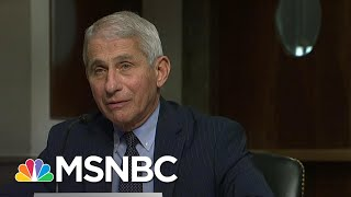 Fauci 'Cautiously Optimistic' There Will Be A Safe And Effective Coronavirus Vaccine | MSNBC