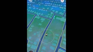 Pokemon Go Free up your bags