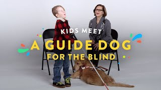 Kids Meet a Guide Dog for the Blind | Kids Meet | HiHo