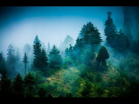 Baixar Zen Reiki Meditation Music: Relaxing Instrumental Music for Yoga, Massage, Meditation, Healing ☯071