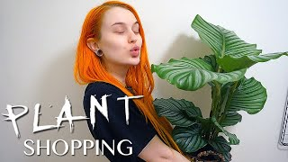 Come Plant Shopping with Me   Daily Vlog