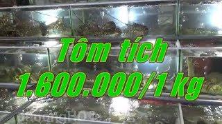 Chợ Đêm Phú Quốc, hải sản khủng giá thế nào?seafood in phu quoc